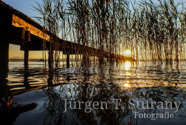 ZEN Kalender – August (Starnberger See)