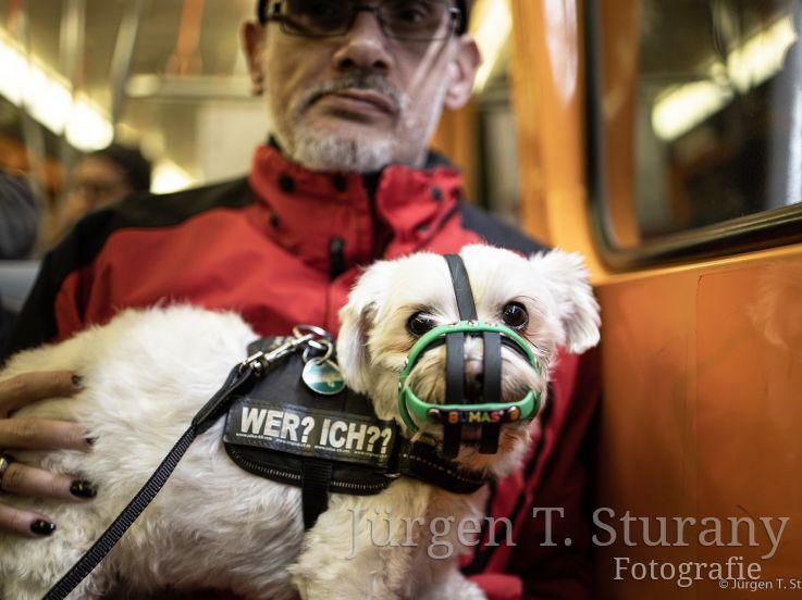 U-Bahn, Wien – 2019