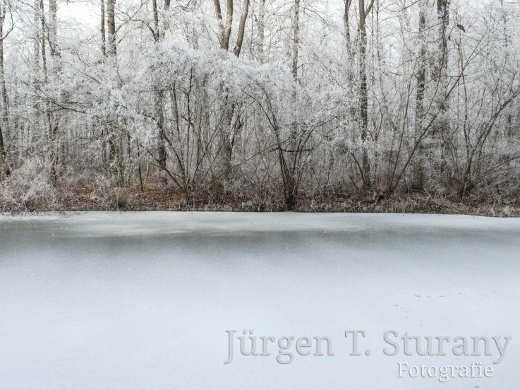 ZEN Kalender – Januar (Englischer Garten, München)