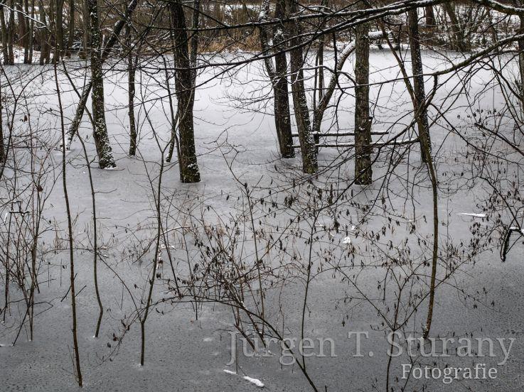 ZEN Kalender – Dezember (Starnberger See)
