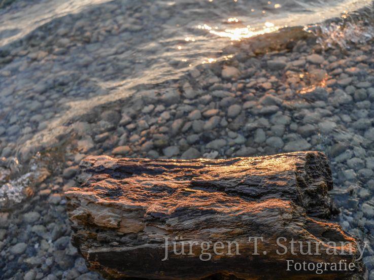 ZEN Kalender – November (Starnberger See)